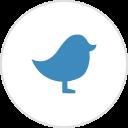 twitter bestwebsoft plugin wordpress