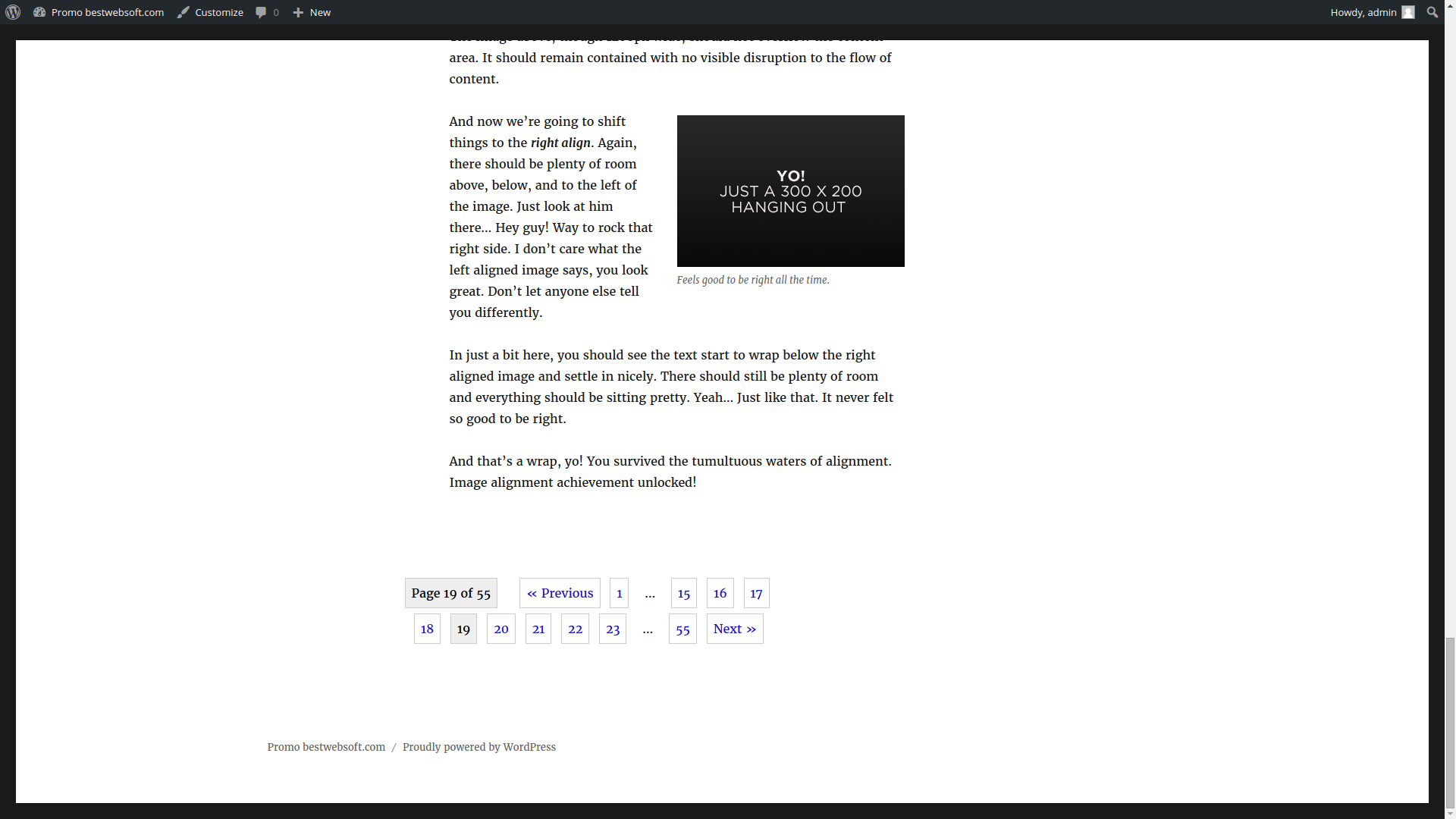 pagination screenshot 1