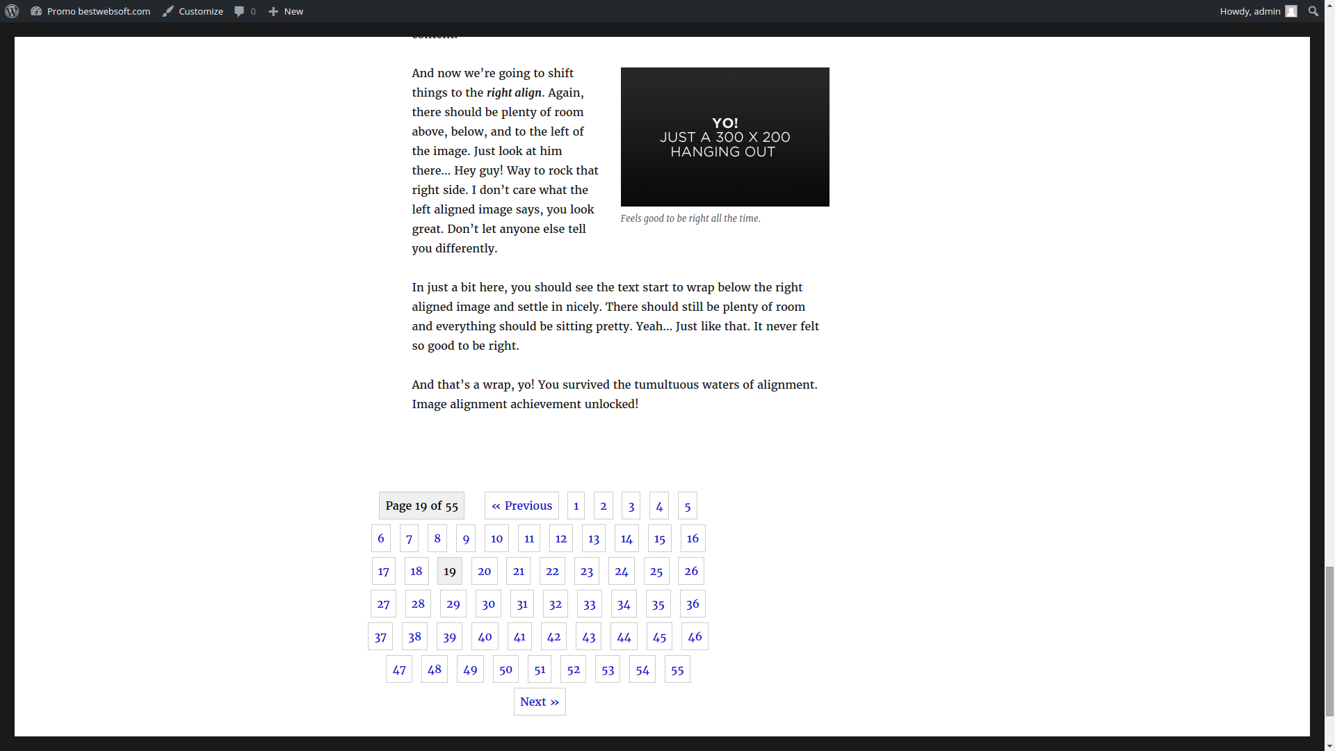 pagination screenshot 2