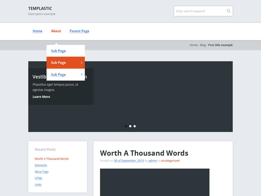 templastic – cheap wordpress theme screenshot 1